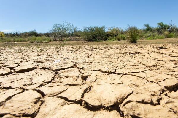 """A """"próxima pandemia"""" pode ser a falta de água em diversas partes do planeta"""